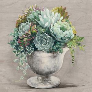 Festive Succulents I Gray by Julia Purinton