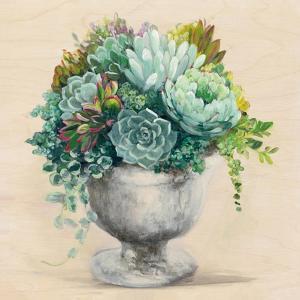 Festive Succulents I by Julia Purinton