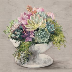 Festive Succulents II Gray by Julia Purinton
