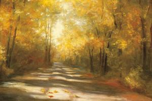 Gap Road Crop by Julia Purinton
