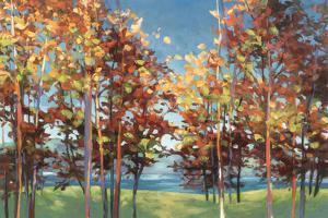 Kaleidoscope by Julia Purinton