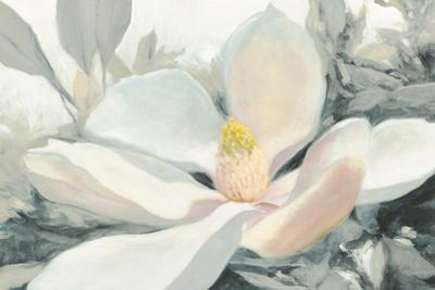 Majestic Magnolia Green Gray Crop by Julia Purinton