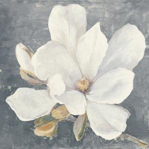 Serene Magnolia Gray by Julia Purinton
