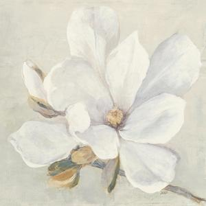 Serene Magnolia by Julia Purinton