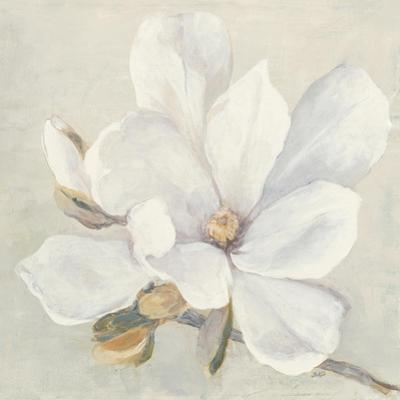 Serene Magnolia by Julia Purinton