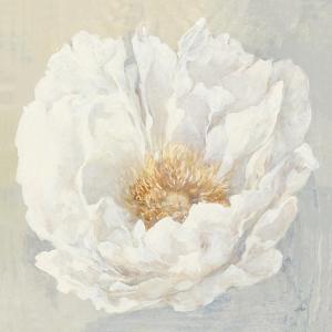 Serene Peony by Julia Purinton