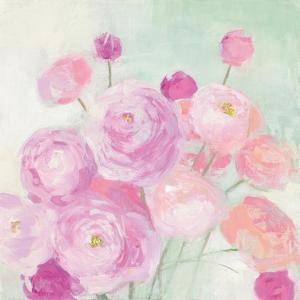 Soft Ranunculus by Julia Purinton