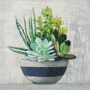Succulent Still Life II Navy by Julia Purinton