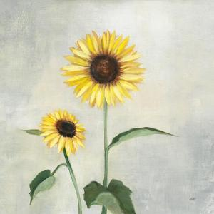 Sunny Blooms I by Julia Purinton