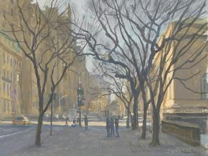 Fifth Avenue and the Met, 2010 by Julian Barrow