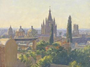 Rooftops of San Miguel Allende, 2005 by Julian Barrow