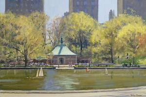 The Boating Lake, Central Park, New York, 1997 by Julian Barrow