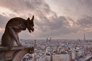 A Gargoyle on Notre Dame De Paris Cathedral Looks over the City, Paris, France, Europe by Julian Elliott