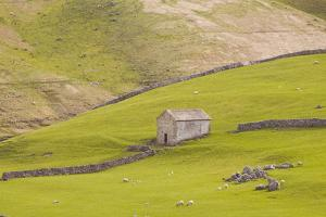 A Stone Barn Near to Littondale in the Yorkshire Dales, Yorkshire, England, United Kingdom, Europe by Julian Elliott