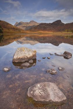 Blea Tarn and the Langdale Pikes in the Lake District National Park, Cumbria, England, UK by Julian Elliott