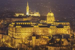 Buda Castle, the historic seat of the Hungarian kings in Budapest, Hungary by Julian Elliott
