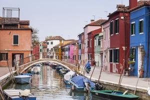 Colored Houses on the Island of Burano, Venice, Veneto, Italy, Europe by Julian Elliott