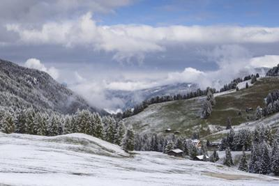 Early snow near to the Alpe di Siusi in the Dolomites, Trentinto-Alto Adige/South Tyrol, Italy, Eur by Julian Elliott