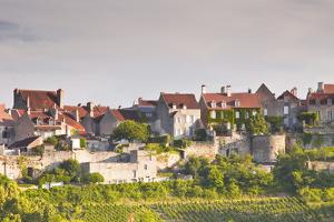 Le Clos Vineyard Below the Hilltop Village of Vezelay in Burgundy, France, Europe by Julian Elliott