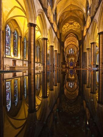 Looking across the Font of Salisbury Cathedral, Wiltshire, England, United Kingdom, Europe by Julian Elliott