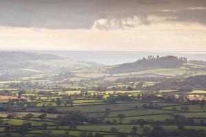 Looking across the Marshwood Vale from Pilsdon Pen, Dorset, England, United Kingdom, Europe by Julian Elliott