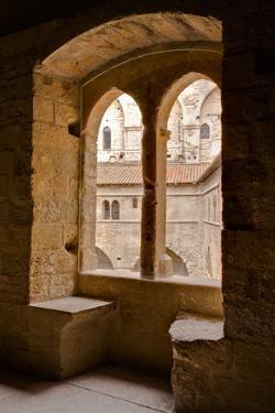 Looking Through a Window in the Palais De Papes by Julian Elliott