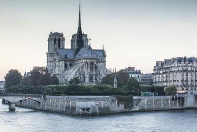 Notre Dame de Paris Cathedral, UNESCO World Heritage Site, Paris, France, Europe by Julian Elliott