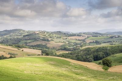 Rolling hills of the Val di Spoleto, Umbria, Italy, Europe by Julian Elliott