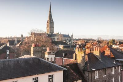 Salisbury cathedral across the rooftops of the city, Salisbury, Wiltshire, England, United Kingdom, by Julian Elliott