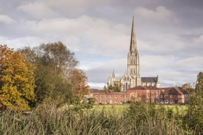 Salisbury Cathedral from the West Harnham Water Meadows, Salisbury, Wiltshire, England, United King by Julian Elliott