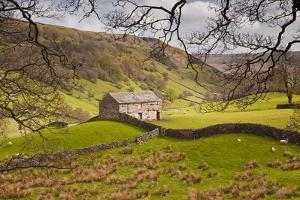 Stone Barn in the Swaledale Area of the Yorkshire Dales National Park by Julian Elliott