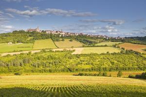 The Beaux Village De France of Vezelay in the Yonne Area, Burgundy, France, Europe by Julian Elliott
