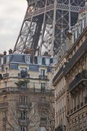 The Eiffel Tower and Typical Parisian Apartments, Paris, France, Europe by Julian Elliott