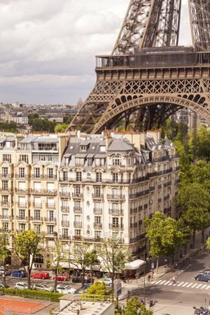 The Eiffel Tower, Paris, France, Europe by Julian Elliott