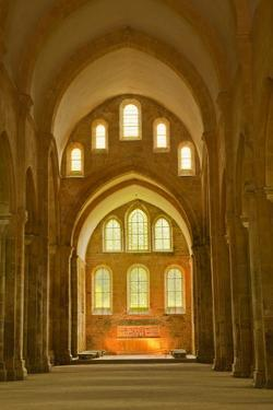 The Nave of Fontenay Abbey, UNESCO World Heritage Site, Cote D'Or, Burgundy, France, Europe by Julian Elliott