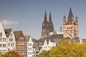 The Old Town of Cologne, North Rhine-Westphalia, Germany, Europe by Julian Elliott