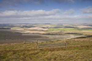 The Rolling Hills of the South Downs National Park Near Brighton by Julian Elliott
