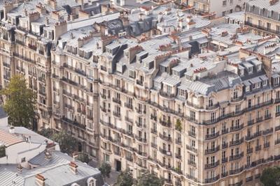 The Rooftops of Paris from the Eiffel Tower by Julian Elliott