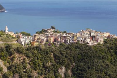 The Village of Corniglia in the Cinque Terre, UNESCO World Heritage Site, Liguria, Italy, Europe by Julian Elliott