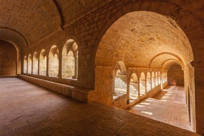 Thoronet Abbey in the Var region, Provence, France, Europe by Julian Elliott