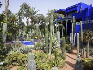 Sub-Tropical Jardin Majorelle in the Ville Nouvelle of Marrakech by Julian Love