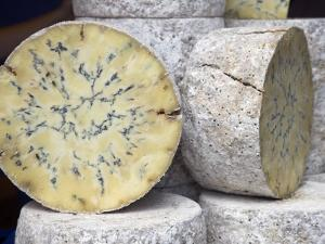 Traditional Cheese for Sale in Borough Market, London by Julian Love