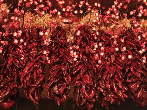 Chili Ristra, Santa Fe, New Mexico, USA by Julian McRoberts