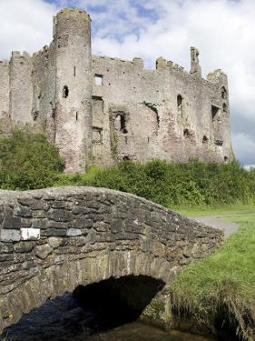 Castle and Footbridge, Laugharne, Carmarthenshire, South Wales, Wales, United Kingdom, Europe by Julian Pottage