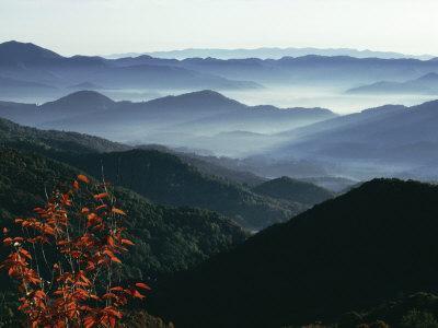 Mist Rising from the Cataloochee Ski Area, Near Maggie Valley, North Carolina, USA