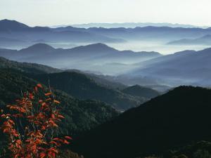 Mist Rising from the Cataloochee Ski Area, Near Maggie Valley, North Carolina, USA by Julian Pottage