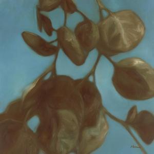 Eucalyptus II by Julianne Marcoux