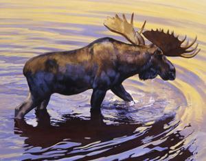 Alaskan Gold by Julie Chapman