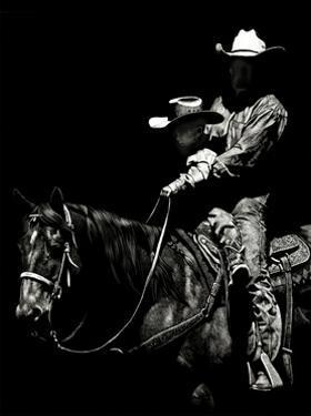 Scratchboard Rodeo II by Julie Chapman