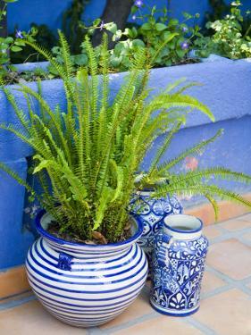 Colorful Ceramic Pots, San Miguel De Allende, Guanajuato State, Mexico by Julie Eggers